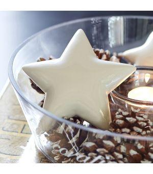 Shiny Star Decoration M