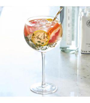 Club 48 Cocktail Glass