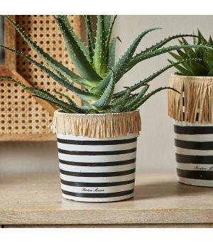 Summer Stripe Pot S