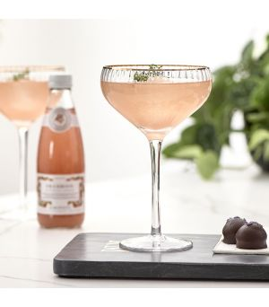 The Classic Club Cocktail Glass