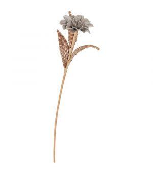 Kvet MUST Living Rattan bloem