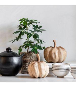 Tekvice Pumpkins 2/S